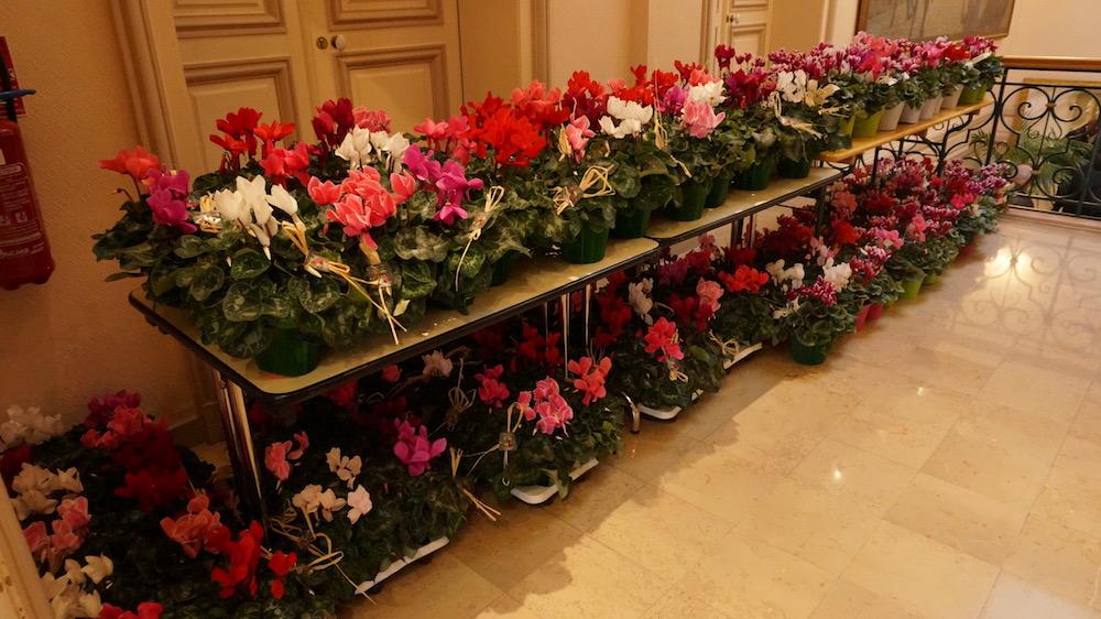 fleurs_etrepagny