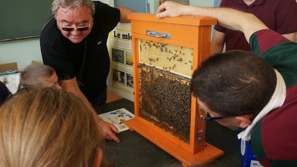 07-vie abeilles-etrepagny